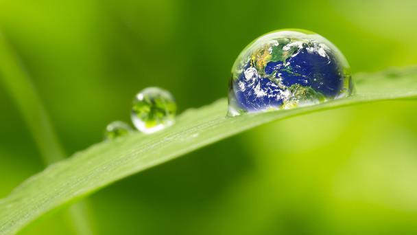 Grüner-Wasserstoff
